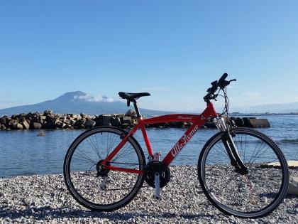 Alfa Romeo Touring – Napoli